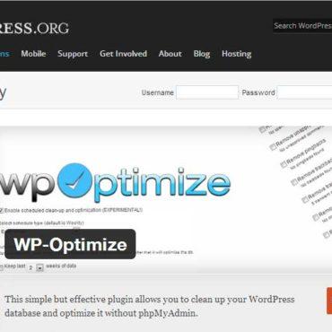 Ottimizzare il database di wordpress