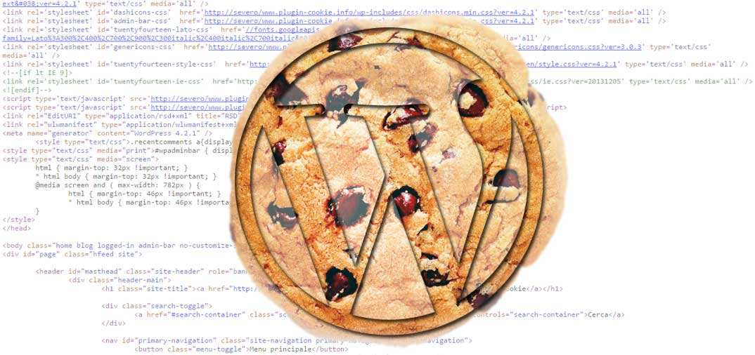 Analisi plugin WordPress per normativa cookies