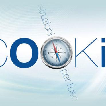 Cookie e Normativa: Guida all'uso