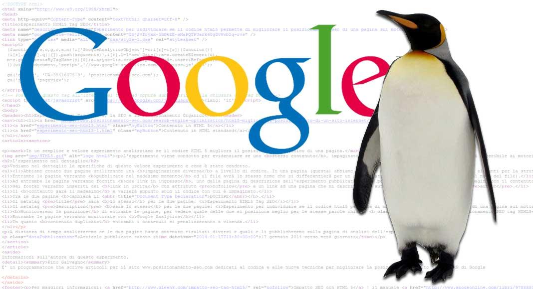 Google Penguin: cos'è e come funziona?