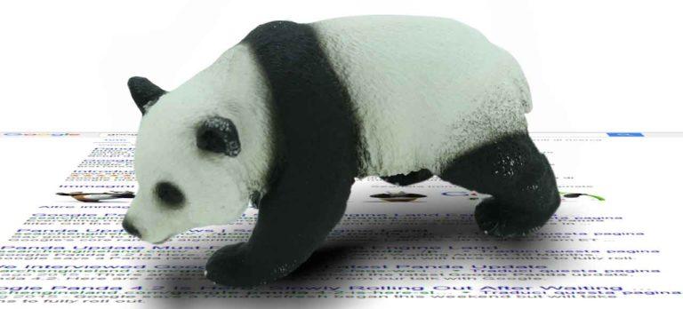 I segnali di Google Panda inseriti nel Core dell'algoritmo